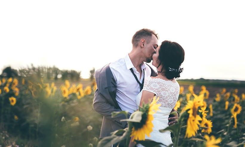 ひまわり畑でキスをしているカップル