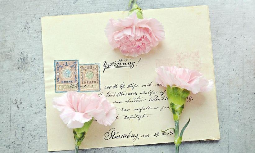 手紙の上に置かれた3本の花