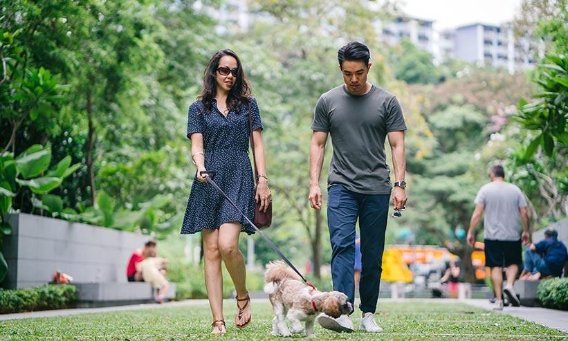 公園を犬と散歩するカップル