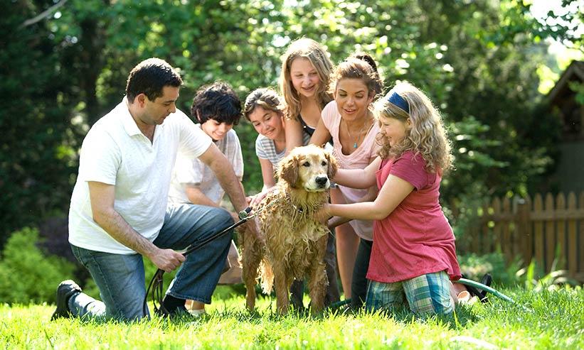 仲の良い家族と犬