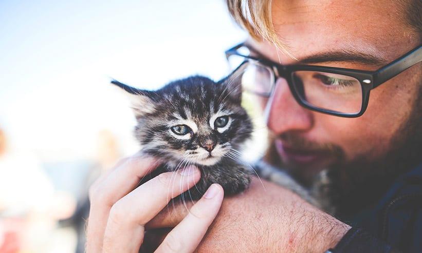 猫を抱え見つめる男性