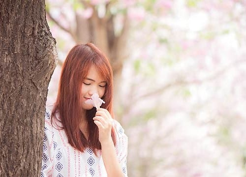 花の香りをかぐ日本人