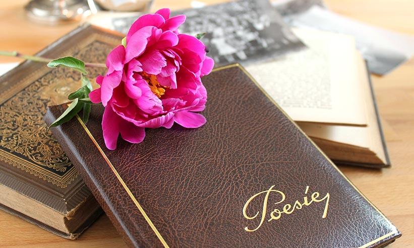 机に置いてある日記